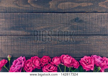 Frame Of Roses On Dark Rustic Wooden Background. Spring Flowers. Spring Background. Valentine's Day