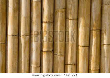 High Quality Bamboo Texture