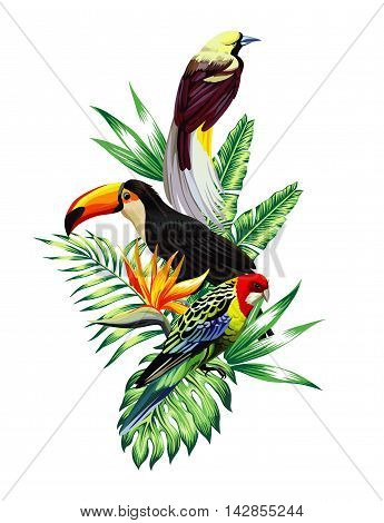 Floral composition exotic tropical birds toucan and parrot sitting on a palm banana leaves and Strelitzia flower. Print nature fashion illustration painting jungle wallpaper on a white background