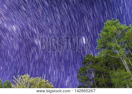 star in bluesky at Phukradueng national park : Loei, Thailand