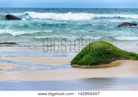 green stone on beach pop up when the sea gone