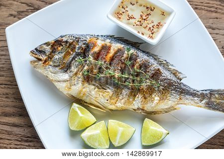 Grilled Dorade Royale Fish On The Plate