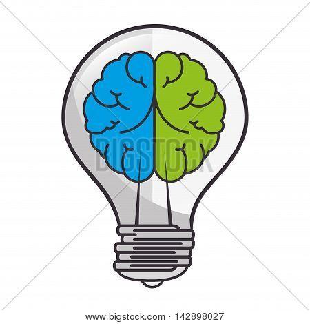 brain bulb idea ingenious light bright organ human vector illustration isolated