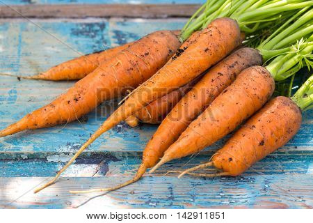 carrots on a vintage blue wooden background