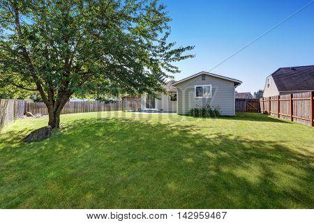 Grass Filled Backyard Garden Of American Rambler House