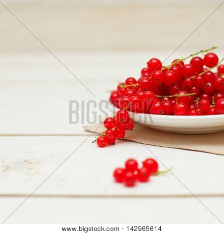 Summer food background with red berry - redcurrant
