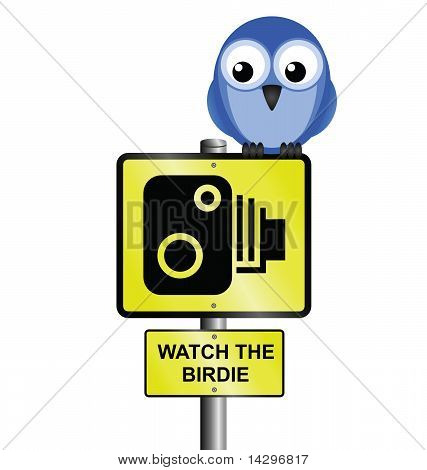 Speed camera sign with photographic saying watch the birdie poster