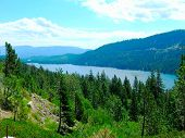 Lake in Nevada with beauitful scenic views blue skys and lush green trees poster