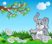 Bunny on meadow with daisies - vector illustration. poster