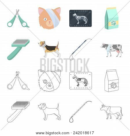 Dog, Cow, Cattle, Pet .vet Clinic Set Collection Icons In Cartoon, Outline Style Vector Symbol Stock