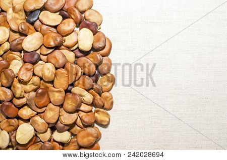 Bean Seeds Are Laid Out On A Light Linen Fabric With A Clear Boundary Between The Seeds And The Back