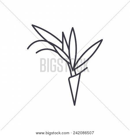 Bird Of Paradise Flower Line Icon, Vector Illustration. Bird Of Paradise Flower Flat Concept Sign.