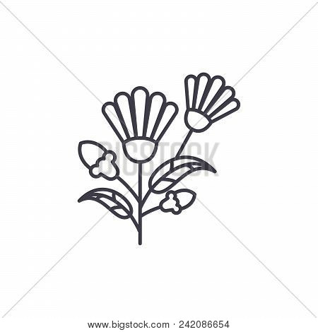 Botanical Flower Line Icon, Vector Illustration. Botanical Flower Flat Concept Sign.