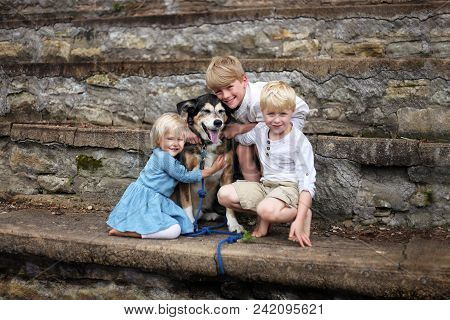 Three Young Children, Two Boys And Their Baby Sister, Are Hugging Their Adopted Pet German Shepherd