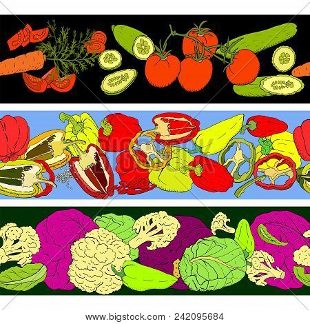 Seamless Pattern Brushes With Different Vegetables. Horizontal Borders For Your Design, Announcement