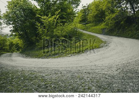 Summer Landscape With A Shaded Path. The Path Through The Forest. Path To Green Forest In Spring. Th