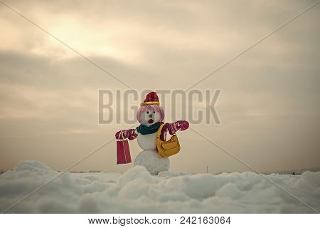 Happy New Year With Snowman. Snowmans Happy Couple. Snowmans Celebration. Christmas Gift And Xmas De