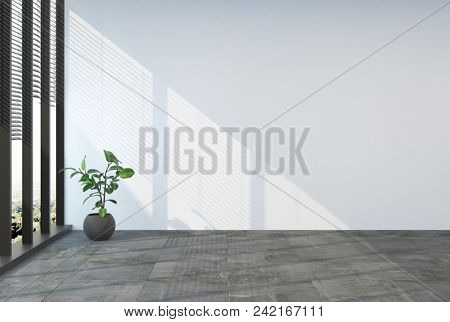 Empty unfurnished room with grey tiled floor and large sunny windows with blinds and a single potted plant in the corner. 3d Rendering