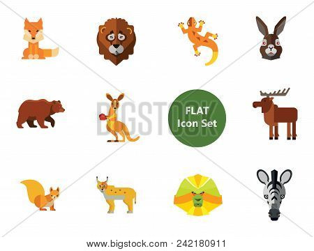 Animal Icon Set. Lynx Lizard Fox Hare Head Bear Koala Lion Face Red Squirrel Brown Moose Yak Kangaro