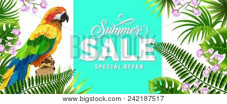 Summer Sale, Special Offer Blue Banner Design With Tropical Leaves, Lilac Flowers And Parrot. Text C