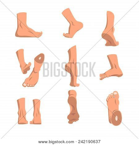 Human Foot In Various Positions Set, Different Views Of Male Feet Vector Illustrations Isolated On A