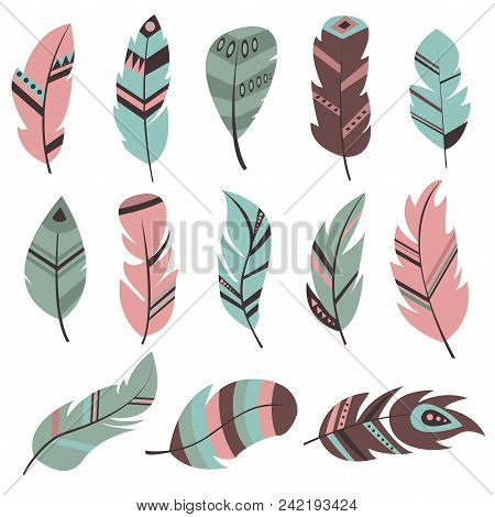 Tribal Feather Bird Nature Wing Element Vector Graphic Illustration Hand Drawn Style. Ethnic Fluffy
