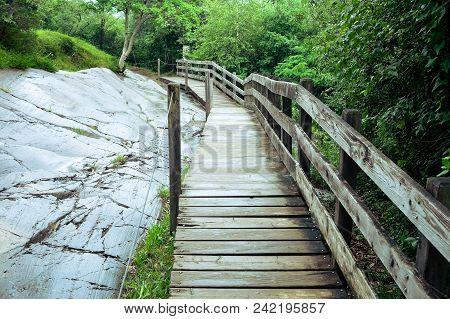 Wooden Footbridge In Foggy Nature, Way In Nature Park