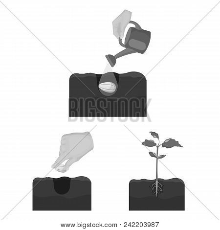 Farm And Agriculture Monochrome Icons In Set Collection For Design. Garden And Plants Isometric Vect