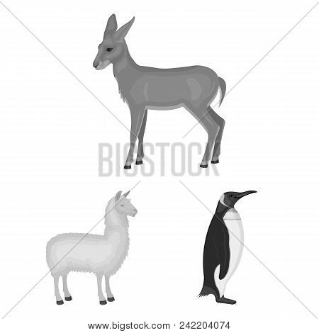 Different Animals Monochrome Icons In Set Collection For Design. Bird, Predator And Herbivore Vector