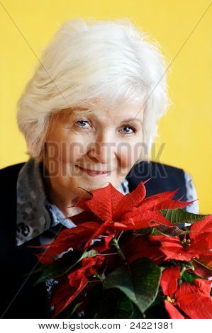 Senior lady portrait with christmas flower on yellow