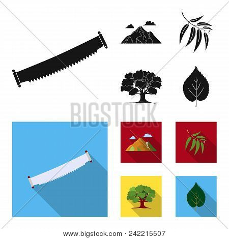 Mountain, Cloud, Tree, Branch, Leaf.forest Set Collection Icons In Black, Flat Style Vector Symbol S