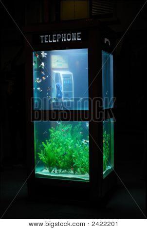 Aquarium Telephone Booth