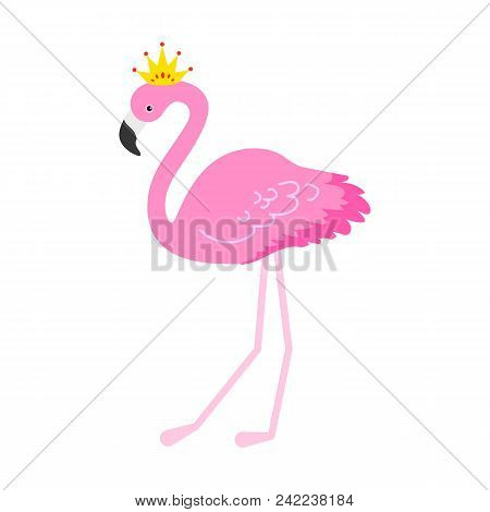 Flamingo Or Tropical Birds Illustration For Party Card. Summer Exotic Background. Vintage Cute Holid