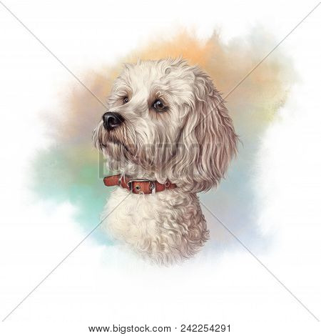 Portrait Of Maltese Dog. Toy Or Miniature Poodle On Watercolor Background. Cute Puppy. Watercolor Ha