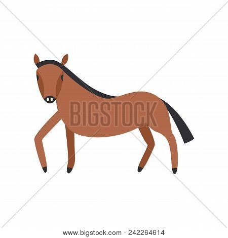 Bay Horse Full Length Isolated On White Background. Cute Farm Animal Side View In Flat Vector Illust