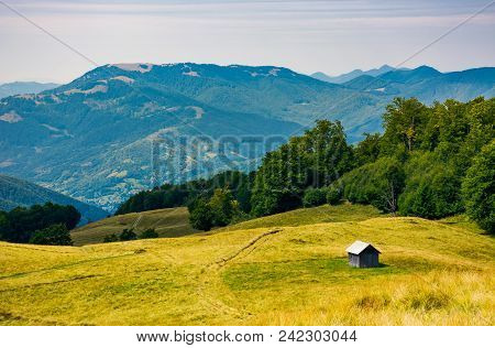 Abandoned Herdsman Shed On Hillside Near Forest. Lovely Summer Nature Scenery In Carpathian Mountain