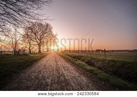 Countryside Trail In The Morning Sunrise With Rural Fields On Both Sides Of The Road And Trees By Th