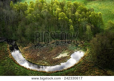 Happy Nature With A Smiling Lake Near A Green Forest Seen From Above