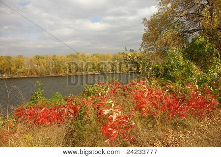 River In Autumn