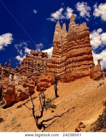 Fairyland Canyon Trail