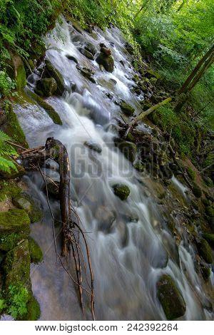 Mountain River - Stream Flowing Through Thick Green Forest. Stream In Dense Wood. Bistriski Vintgar,