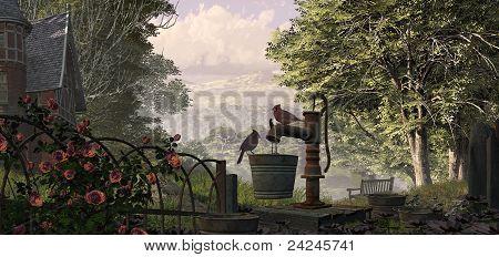 Cardinals And Water Pump