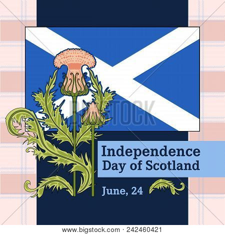 Vector Postcard To The Independence Day Of Scotland With A Picture Of A Thistle And A Flag Of Scotla