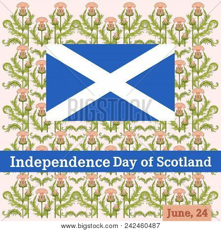 Vector Postcard To The Independence Day Of Scotland With A Pattern From A Thistle And A Flag Of Scot
