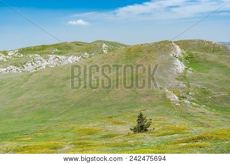 Spring Landscape With Alpine Meadows Near Chatyr-dah Mountain  In Crimean Peninsula, Ukraine