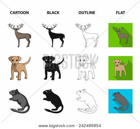 Puppy, Rodent, Rabbit And Other Animal Species.animals Set Collection Icons In Cartoon, Black, Outli