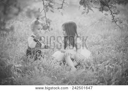 Child Childhood Children Happiness Concept.children Sit Under Apple Tree In Summer Park. Concept Of