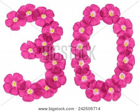 Arabic Numeral 30, Thirty, From Pink Flowers Of Flax, Isolated On White Background