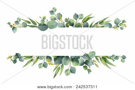 Watercolor Hand Painted Green Floral Banner With Silver Dollar Eucalyptus Isolated On White Backgrou