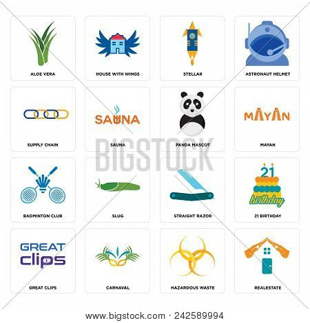 Set Of 16 Simple Editable Icons Such As Realestate, Hazardous Waste, Carnaval, Great Clips, 21 Birth